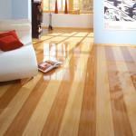 glyanceviy-laminat-foto-elesgo-natural-bamboo